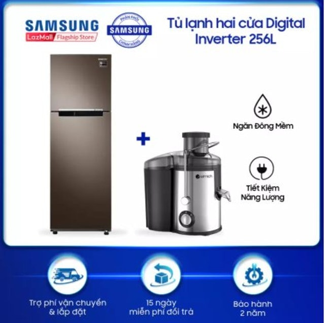 Samsung Tủ Lạnh Hai Cửa 256L 1
